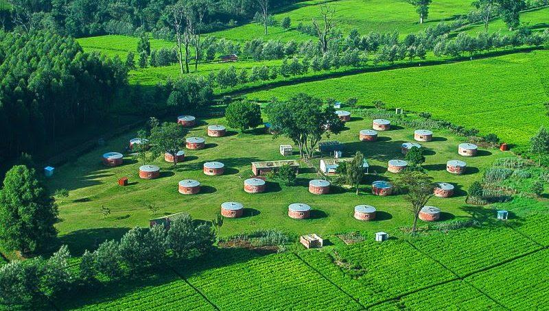 Small scale tea farmers to build $27 million hydro power plant
