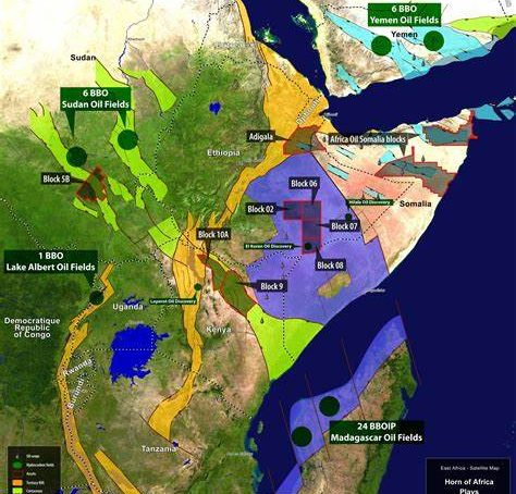 Should African countries fire sell their oil and gas assets?