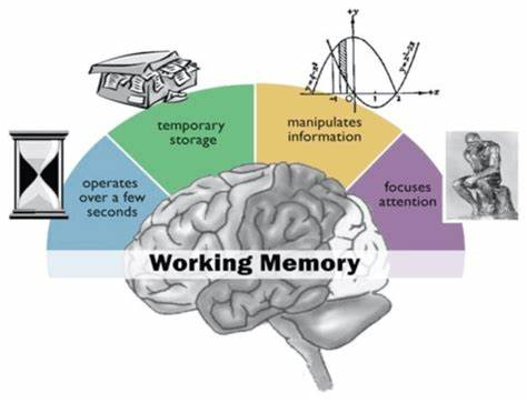 Forgetting may make your mind more efficient