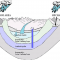 Collapsing aquifers, flooding of low-lying lands to affect 1.6 billion people by 2040