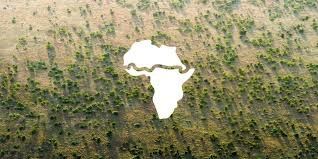 $6.5 billion lined up for Great Green Wall initiative in the Sahel region