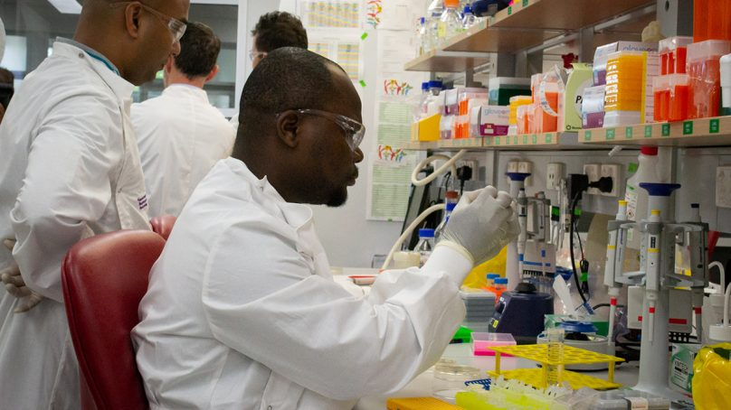 Spike in the number of scientists studying Covid awes researchers
