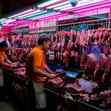 WHO mission revisits theory that coronavirus is spread through frozen meat