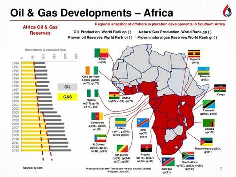 Africa can and should, decide how it harnesses its natural resources