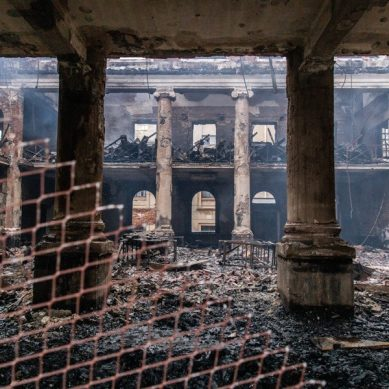 Forest fires burn down historic South African library and plant collection