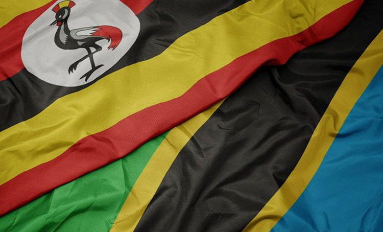 Oil pipeline: Uganda, Tanzania have new policies to protect national interests