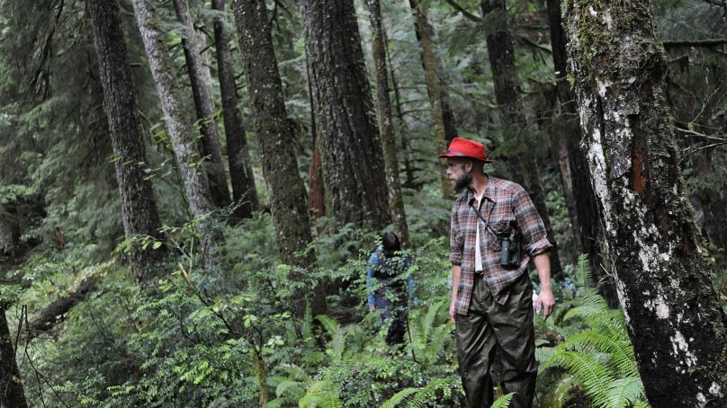 America's largest forestry research Africa can copy in its Great Green Wall plan
