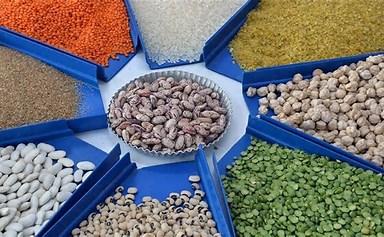 African countries secure $17 billion facility to double food production by 2030