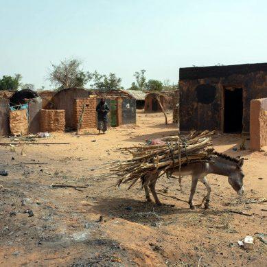 UN peacekeepers exit leaves Darfur at the mercy of killer Janjaweed militias