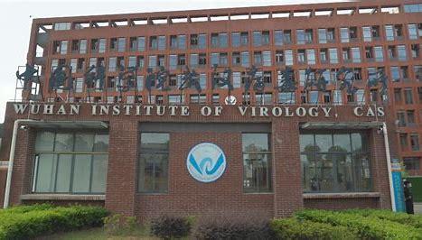 New information on Wuhan researchers' illness fuels suspicion on origin of Covid