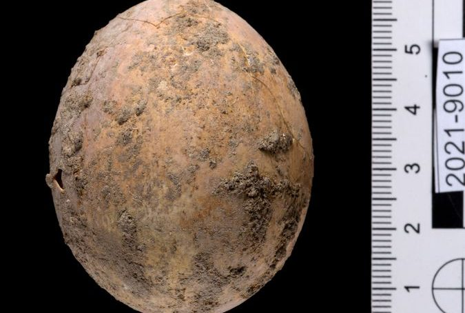 Chicken egg, 1,000 years old, found intact by Israel archaeologists in Yavne city