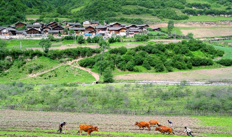 China: Farming having become more mechanised, ecotourism inspires people to live in villages