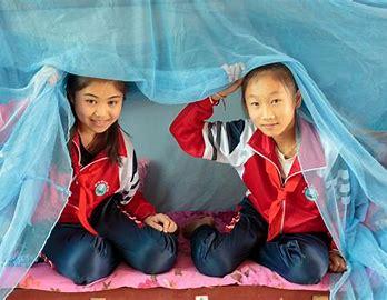 From 30m to zero: WHO declares China malaria free, cites artemisinin drug as key