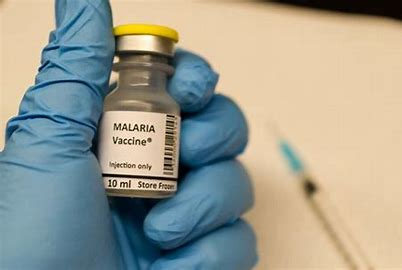 Vaccine made of live malaria parasites shows early success in clinical trial