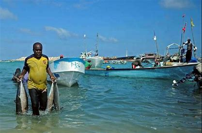 While Somali warlords brutally slaughter each other, foreigners catch their fish for a song