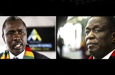 Inside Zimbabwe's sleaze empire: New report details how president's men are bleeding the country