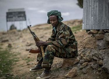 Ethiopia government's ominous 'call to arms' to citizens ignites fears of instability in Horn of Africa