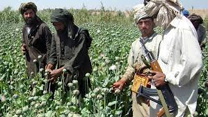 US army exit from Afghanistan sets stage for Taliban warlords to scramble for drug profits and power