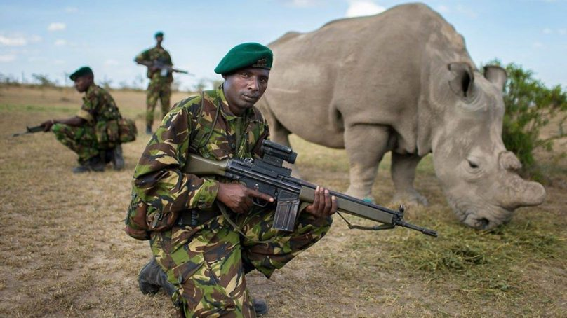 World Ranger Day: Men and women who braved Covid to keep poachers at bay
