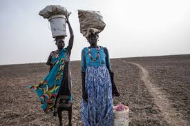Fighting between community militias in South Sudan creates high levels of food insecurity