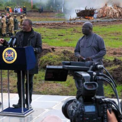 Kenya's President Kenyatta and Gabon's President Bongo top list of African leaders with stolen assets in offshore tax havens