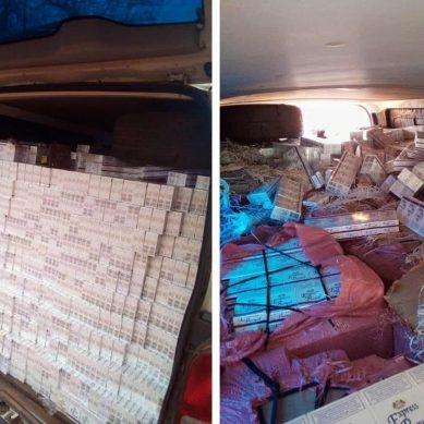 Impounded contraband cigarettes smuggled through Zimbabwe linked to South African army